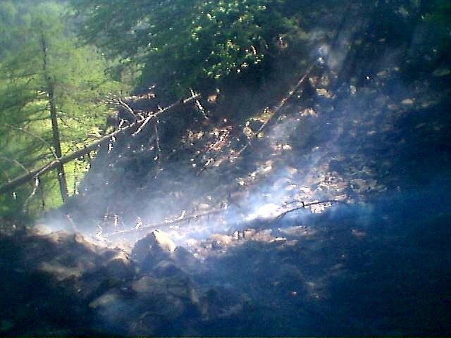 Lesní požár Chřibská