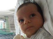 Tobias Horváth  se narodil Monice a Pavlovi v děčínské porodnici 18. června v 10.21. Vážil 3,64 kg  a měřil 54 cm.