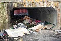 DĚČÍN – STARÉ MĚSTO. Jedno z nejhorších míst v Děčíně je na Starém Městě na břehu Ploučnice nedaleko výkupny kovů. Na břehu najdete kromě hromad lahví a starých matrací řadu skeletů starých elektrospotřebičů zbavených všech kovových součástí.
