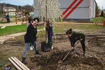 Ve Vilémově vysadili přes třicet stromů.