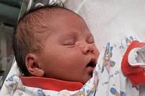 Romaně Vejvančické z Rumburka se 27.dubna ve 20.55 v rumburské porodnici narodila dcera Anežka Vejvančická. Měřila 52 cm a  vážila 4,08 kg.
