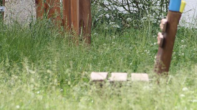 Neposekaná tráva na Starém městě v Děčíně.