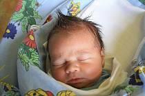 Mamince Martině Durasové z České Lípy, Horních Polic se 19. února v 08.43 narodil v děčínské nemocnici syn Vojtíšek Němec. Měřil 50 cm a vážil 3,6 kg.