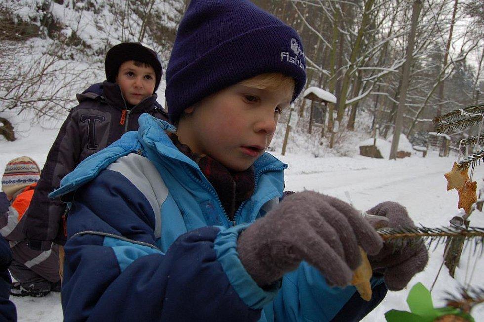 V zoo děti pověsily ozdoby na vánoční stromky.