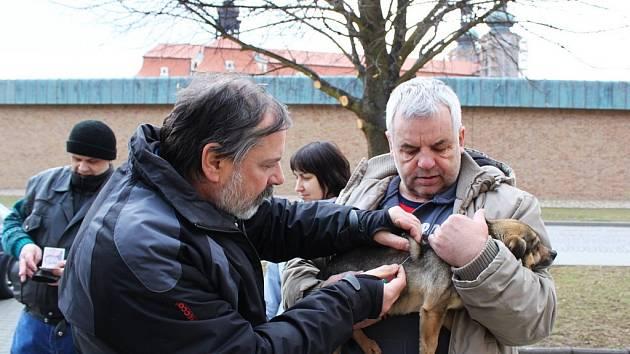 V Benešově nad Ploučnicí budou v sobotu očkovat psy a kočky.