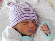 David Kiss se narodil Marice Kissové ze Šluknova 17. ledna v 9.37. Měřil 47 cm a vážil 2,58 kg.