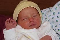 Daně Stodolové ze Šluknova se 3. listopadu ve 21.15 v rumburské porodnici narodila dcera Daniela Stodolová. Měřila 49 cm a vážila 2,3 kg.