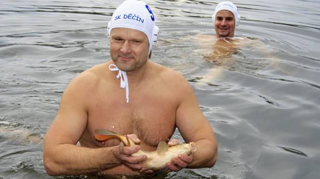Děčínští otužilci utopili na Štědrý den v Zámeckém rybníku kapra.