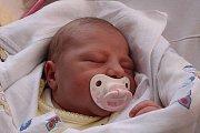 Sofie Zvěřinová se narodila Lucii Ďurčekové z Děčína 20. března v 17.05 v děčínské porodnici. Vážila 3,38 kg.