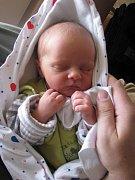 Lence Borlové z Děčína se 4. května 2010 ve 12.12 hodin v děčínské porodnici narodil syn Matyáš Plhal. Měřil 48 cm a vážil 2,62 kg.
