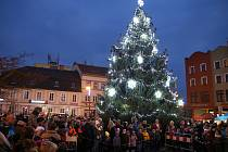 Vítěz ankety: Vánoční strom v Rumburku.