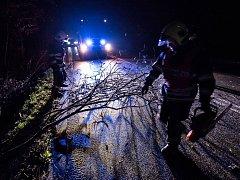 Hasiči likvidují popadané stromy a větve ve Varnsdorfu a okolí.