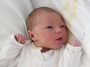 Rodičům Dominice a Petrovi Stejskalovým z Malé Bukoviny se v neděli 23. září ve 13:28 hodin narodila dcera Stela Stejskalová. Měřila 50 cm a vážila 3,43 kg.