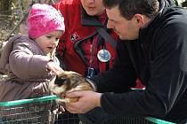 Mláďata lákala hlavně malé děti.