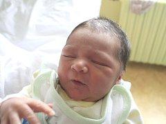 Nikole Polhošové z Děčína se 29. února v 11.20 v děčínské porodnici narodil syn Peter Dutka. Měřil 51 cm a vážil 3,52 kg.