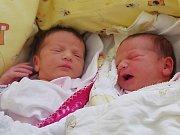 Adélka a Natálka Seemannovy se narodily v ústecké porodnici dne 3. 9. 2013 v 15.20 a 15.22 mamince Silvii Seemannové. Adélka měřila 47 cm a vážila 2,6 kg. Natálka měřila 48 cm a vážila 2,56 kg.