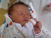 Lucii Polanové z Česká Kamenice se narodila 23. května v 10:18 dcera Lea Voříšková. Vážila 2,95 kg a měřila 48 cm.