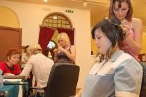Čtrnáctý ročník přehlídky studijních a dalších vzdělávacích možností Škola Děčín 2010 se uskutečnil v děčínském kulturním domě Střelnice.