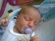 Michaele Zavoralové se 7.6. ve 2.30 hodin v děčínské nemocnici narodila dcera Natálie Zavoralová. Vážila 3,9 kg a měřila 54 cm.