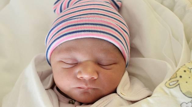 Rodičům Nele a Leonovi Gažiovým z Nových Křečan se v pátek 24. ledna v 5:23 hodin narodila dcera Nela Gažiová. Měřila 47 cm a vážila 2,90 kg.