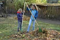 Děčínská zoologická zahrada se připravuje na přívaly spadaného listí. A stejně jako v předchozích letech proto vyhlašuje podzimní brigádu v hrabání listí pro školní kolektivy.