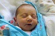 Dášenka Kmetzová se narodila Dagmar Kmetzové z Benešova nad Ploučnicí 10. října ve 21.59 v děčínské porodnici. Vážila 2,7 kg.