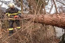 Hasiči strom rozřezali a větve uklidili tak, aby se ulicí dalo opět projíždět.