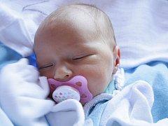 Lence Zubričanové z Děčína se 21. 3. v 11.55 narodila dcera Lili Karbanová. Měřila 49 cm a vážila 2,66 kg.