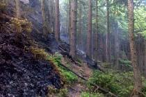Požár v národním parku