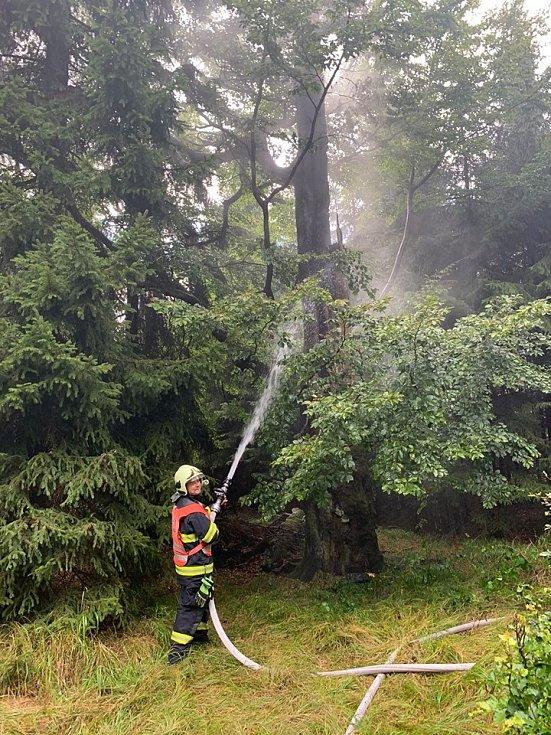 Od úderu blesku hořel strom.