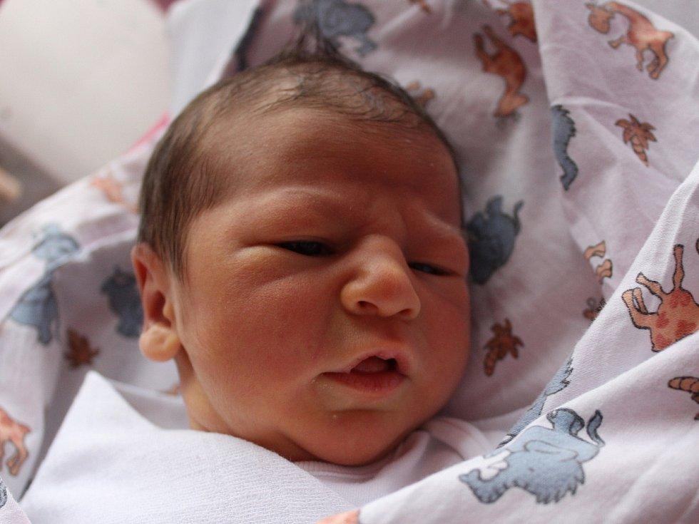 Sofie Černá se narodila Kateřině Pulkové z Děčína 27. listopadu ve 12.39 v děčínské porodnici. Vážila 3,2 kg.