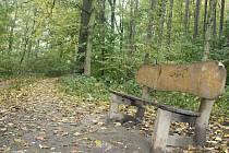 V současné době je v lesoparku v děčínských Želenicích jen několik laviček.
