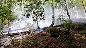 Lesní požár nad Bělou na Děčínsku