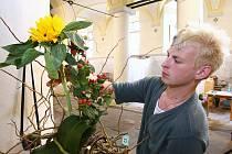 RUBÍNOVÁ SVATBA. Takové bylo téma soutěže floristů na děčínském zámku.