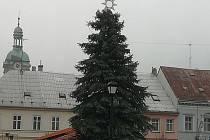Vánoční strom ve Šluknově.