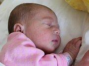 Marie Polláková se narodila Denise Pollákové a Janovi Billymu z Jiřetína pod Jedlovou 30. července v 10.28. Měřila 46 cm a vážila 2,6 kg.