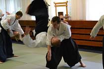 RADEK ŠPÁTA při technice tenchinage na Aikido semináři v Horní Branné.