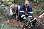 Kolouškovi z pasti pomohli hasiči.