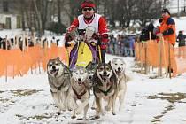 Čáru přes rozpočet udělalo pořadatelům závodu psích spřežení seriálu MČR, Evropského poháru ESDRA CUP a Polského poháru na Sněžníku oteplení.