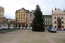 Na Masarykově náměstí je od pátku vánoční strom.
