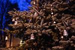 Rozsvěcení vánočního stromu Varnsdorf.