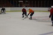 DĚČÍNĚTÍ HOKEJISTÉ mají za sebou první trénink na ledě.