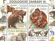 Samice nosorožce tuponosého Zamba.