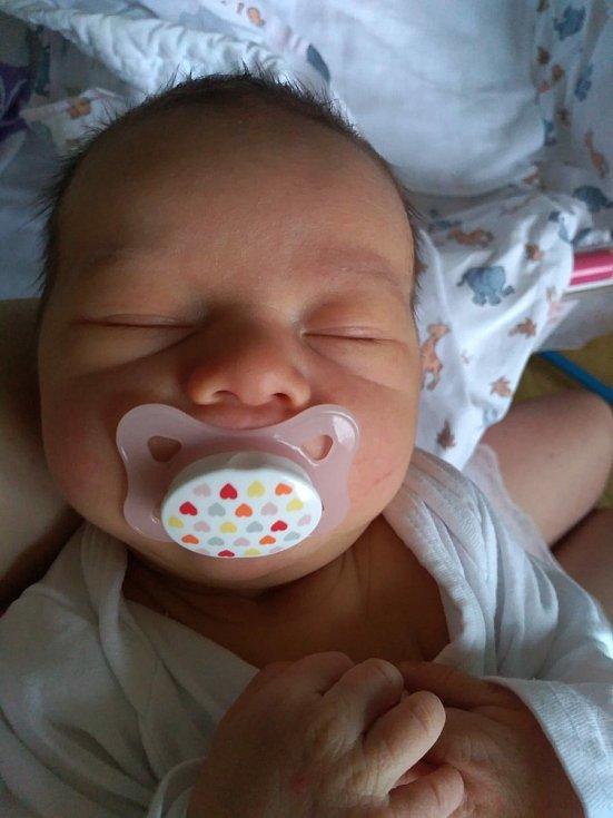 Rodičům Lence a Michalu Dornbach z Děčína se narodila v sobotu 2. ledna dcera Stella Dornbach. Vážila 3,330 kg.