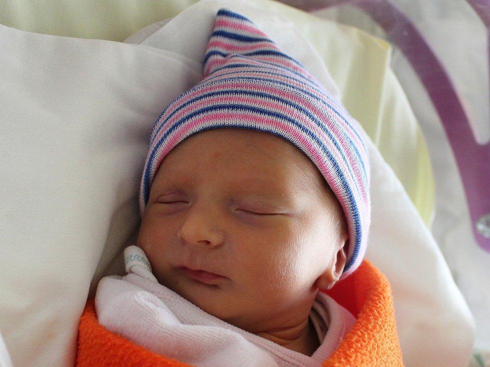 Beata Hollá se narodila Andree Hollé a Davidu Kratinovi z Rumburku 26. října ve 3.45. Měřila 45 cm a vážila 2,57 kg.