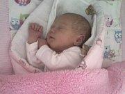 Janě Urbánkové z Děčína se 8. listopadu v 6.36 v děčínské porodnici narodila dcera Lucinka Urbánková. Měřila 47 cm a vážila 2,64 kg.