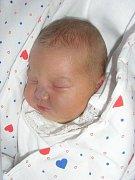 Petře Rončákové z Děčína se 15. března ve 21:39 v děčínské porodnici narodila dcera Natálie Hajná. Měřila 53 cm a vážila 4,55 kg