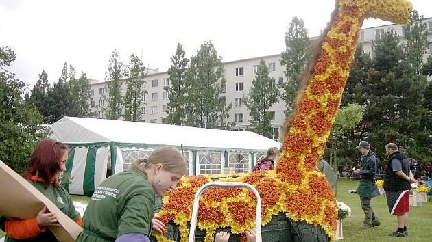 Žirafa z Děčína skončila na třetím místě