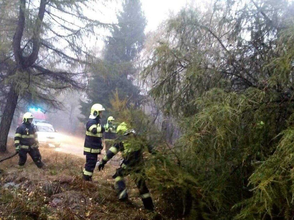 Několik popadaných stromů odstranili hasiči na Sněžníku.