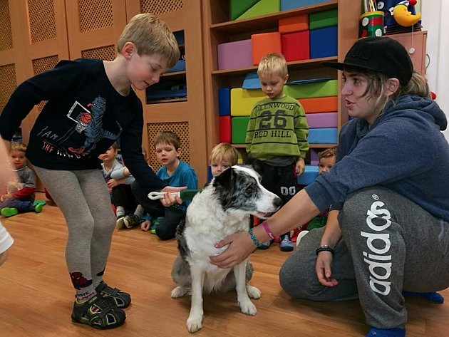 Děti zMŠ Moskevská darovaly zvířatům zútulku pytle granulí ihračky.